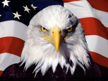 patriot_thumb.jpg